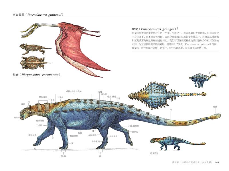 国际插画大师惠特拉奇的动物画教程:艺用生物解剖/特丽尔 惠特拉