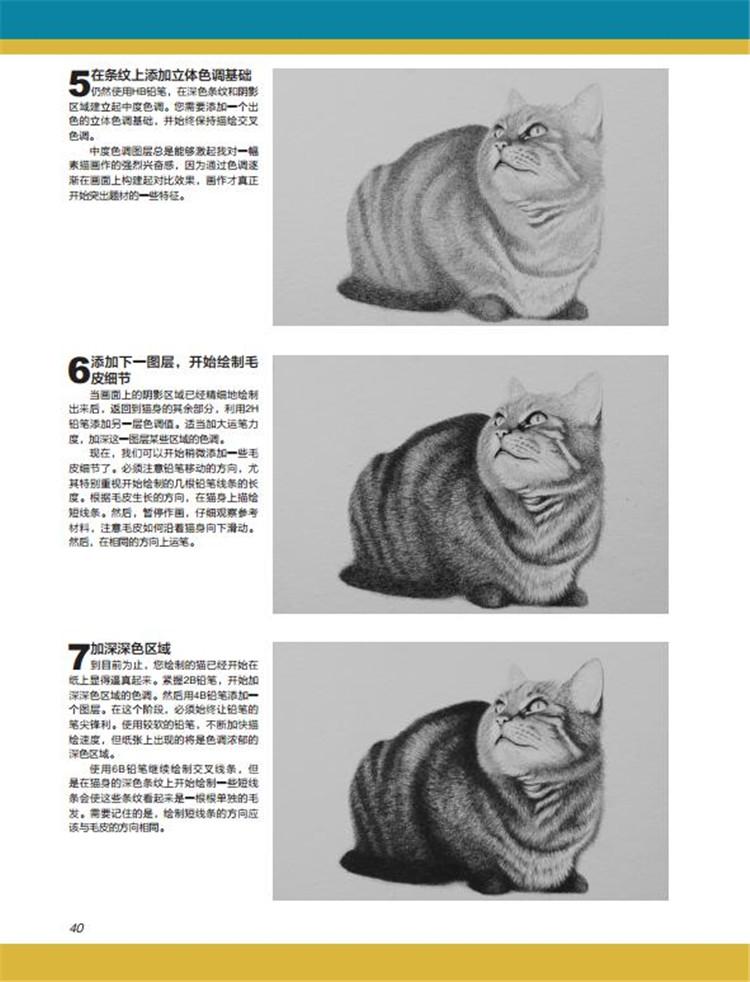 一起来创作绝妙、传神的动物素描! 无论是素描初学者,还是资深的素描艺术家,欢迎大家与罗伯特路易斯考德威尔一起,享受本书的精彩课程。本书将毫无保留地为读者展示精美的铅笔素描画以及它们背后的独特技法。 《逼真动物素描技巧》为想要在绘画实践中学习和提高的读者精心设计了步骤详尽的绘画创作演示,其题材范围包含多种野生动物及宠物。本书的深度指导向大家展示了如何进行素描画的构图、如何将动物图像融入素描画、什么地方应该加深色调、怎样突出关键高光部分、怎样梳理*后的细节等,从而用铅笔将动物画得栩栩如生。 多步骤演示囊括了